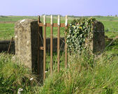 Old gate and two pillar — Stock Photo