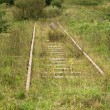 Royalty-Free Stock Photo: Very old railway track
