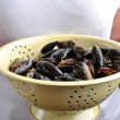 Stock Photo: Organic mussel ready to eat