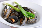 Organic mussel ready to eat — Stock Photo