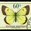 Royalty-Free Stock Photo: Vintage  postage stamp.   Butterfly 6