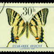 Vintage postage stamp. Butterfly 4 — Stock Photo