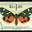 Vintage postage stamp. Butterfly 3 — Stock Photo