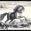 Vintage  postage stamp. Beautiful horse - Stok fotoraf