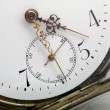 Stock Photo: Taschenuhr