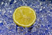 Zitrone-2008 — Stock Photo