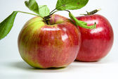 Roter Apfel — Stock Photo