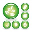 Set of web icons with leaves - Stock Vector