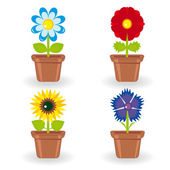Set of four flowers in flowerpots — Stock Vector