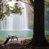 Whangarei Falls — Stock Photo