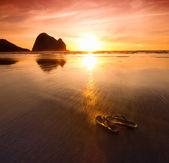 Flops on beach — Stock Photo