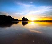 Piha Beach — Stock Photo