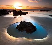 Heart Shaped Pool — Stock Photo