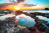 Muriwai beach — Stock Photo