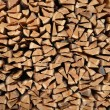Wooden logs — Stock Photo #1576901