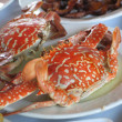 Red crabs - Foto Stock