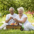 Mature couple — Foto de Stock