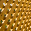 Wooden trellis — Stock Photo