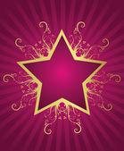 Summer star design — Stock Vector