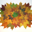 Autumn frame - Stockfoto