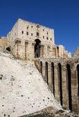 The Aleppo Castle — Stock Photo