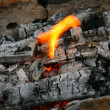 Flame on charcoal - Stock Photo