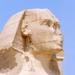 Head of Great Sphinx Giza in 2009 — Stock Photo
