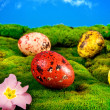 Painted Easter eggs on a green meadow — Lizenzfreies Foto