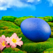 Painted Easter egg on a green meadow - Stock Photo