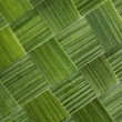 Background from a grass — Stock Photo