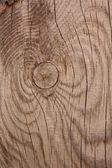 Pattern wood — Stock Photo