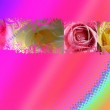 Roses background — Stock Photo #1713564