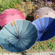 Umbrellas — Stock Photo #2122864