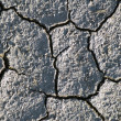 Dry earth texture — Foto de Stock
