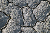 Dry earth texture — Stockfoto