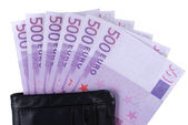 Wallet with euro money — Stockfoto