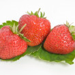 Strawberry and green leaves — Stock Photo