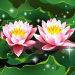 Stock Vector: Lotus flowers on water and shining stars