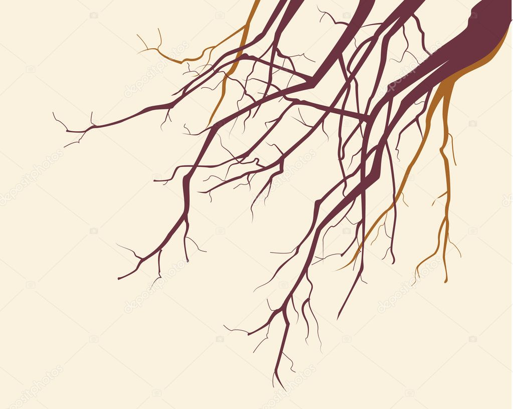 Vector tree branches silhouette background — Векторная иллюстрация #1836737