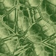 Abstract green background — Stock Photo #1843356