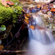Stock Photo: Waterfall in autumn forest