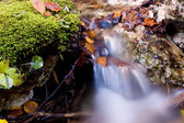 Waterfall in autumn forest — Stock Photo