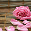 Stock Photo: Rose and rose petals
