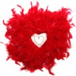Heart in the red feathers — Stock Photo