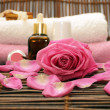 Stock Photo: Pink rose and spa