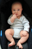5 months old baby boy in a seat — Stock Photo