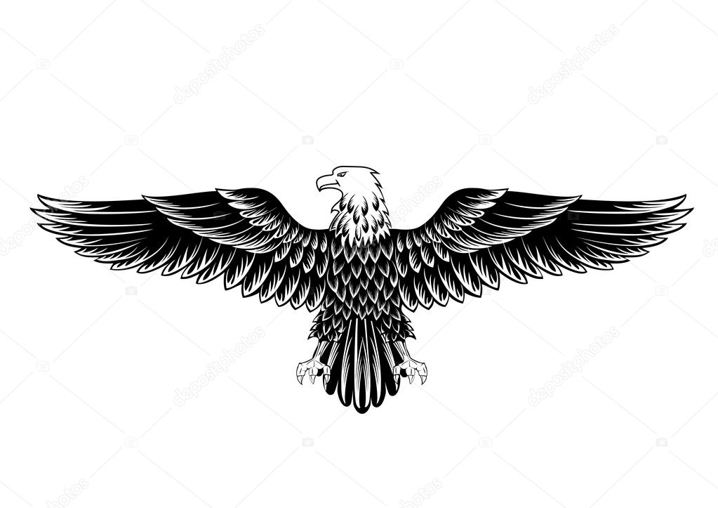 Vector image of an eagle with  Eagle Wings Vector