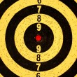 Photo: Dartboard target with numbers