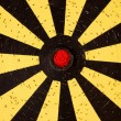 Dartboard target — Stock Photo