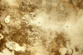 Mold texture — Stock Photo